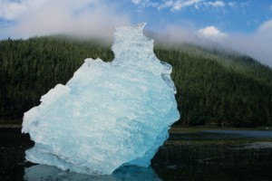 Lump of ice in foreground, mist over woods overgrowing mountain, LeConte Bay, Alaska, USA